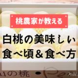白桃の美味しい食べ頃&食べ方