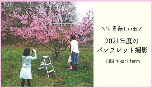 桃の花が満開の中、2021年度のパンフレットの撮影会をしました🌸